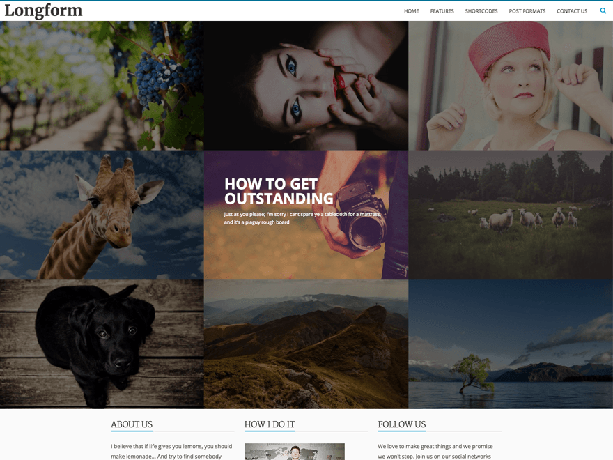 free-wordpress-themes-6